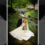 Real-Life Storybook Wedding